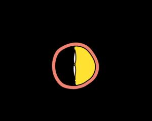 icon saubere sache 30 minuten stoppuhr
